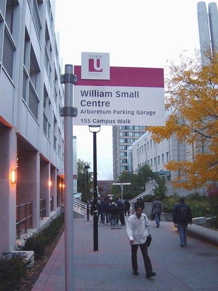 多伦多大学会计本科_WilliamSmall
